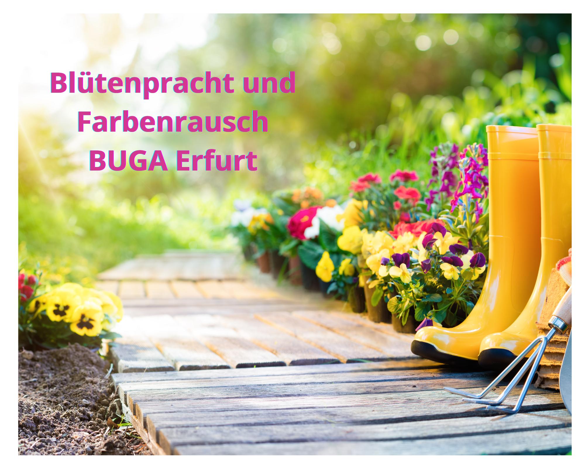 """Bundesgartenschau 2021 """"Blütenpracht und Farbenrausch in Erfurt"""" am 06.09.2021"""