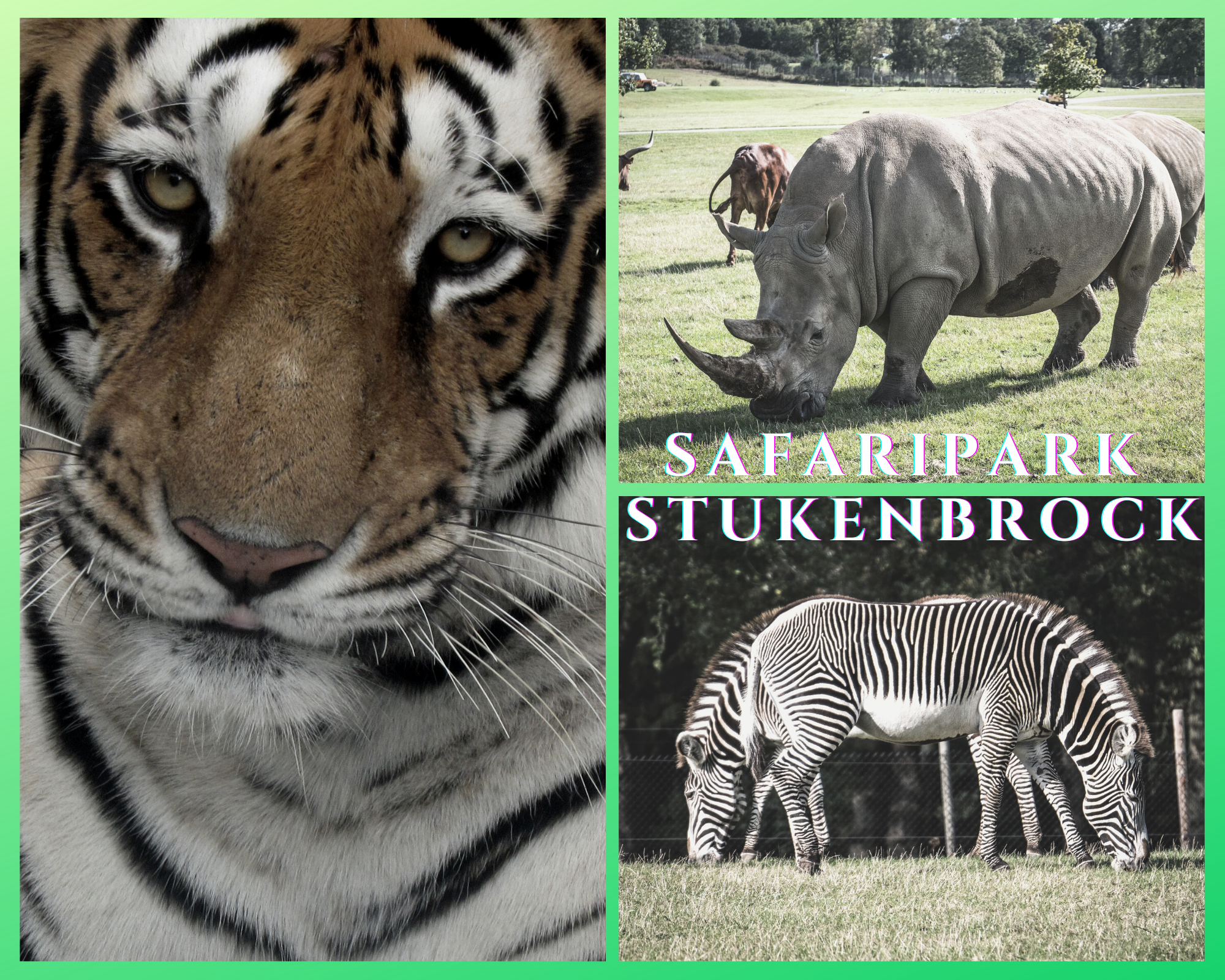 Safaripark Stukenbrock Zoo und Freizeitpark am 31.08.2021